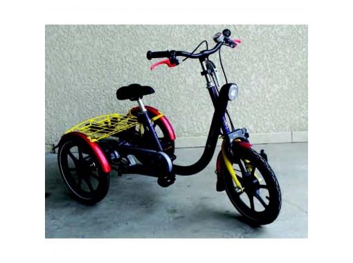 tricycle enfant mini