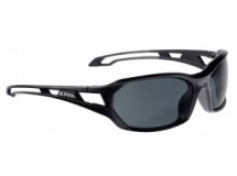 lunettes de sol.Alpina Berryn CM+