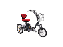 Tricycle scooter adulte Easygo