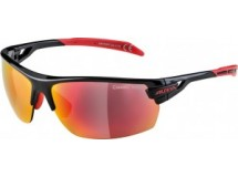 lunettes de sol.Alpina Tri-Scray
