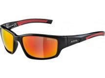 lunettes de soleil Alpina Keekor