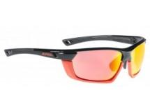 lunettes Alpina Tri-Scray Multiframe