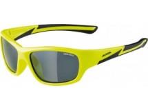 lunettes de soleil Alpina Flexxy Youth