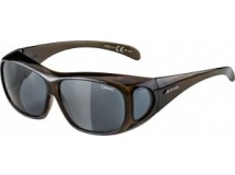 lunettes Alpina Overview