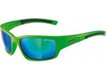 lunettes Alpina Keekor