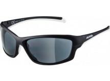 lunettes de sol.Alpina Dyfer