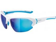 lunettes de soleil Alpina Lyron HR