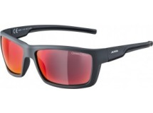 lunettes de soleil Alpina Slay