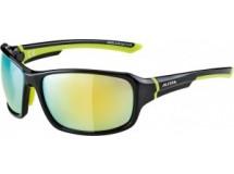 lunettes de soleil Alpina Lyron