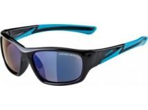 lunettes de sol.Alpina Flexxy Youth