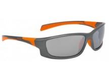 lunettes Alpina Fenno