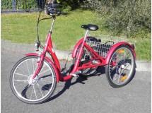 Tricycle Aluminium Aneto Electrique -50 kms,   Bonne affaire