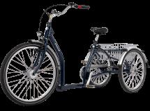 Tricycle Elegance