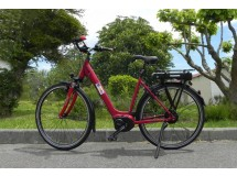 Vélos Electrique e-SALSA Yamaha NuVinci HRMY - déstockage