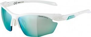 lunettes soleil Alpina Twist Five HR CM+