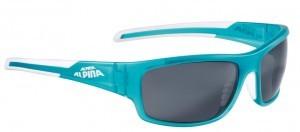 lunettes de sol.Alpina Testido P