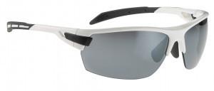 lunettes Alpina Tri-Scray