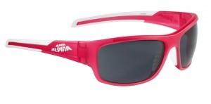 lunettes de sol.Alpina Testido