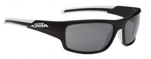 lunettes de soleil Alpina Testido
