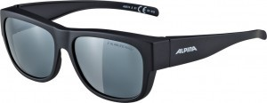 lunettes Alpina Overview II P