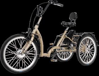 Tricycle électrique Comfort FM