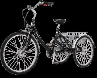 Tricycle électrique Proven
