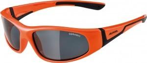 lunettes de soleil Alpina Flexxy Junior
