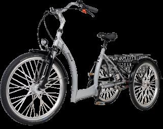 Tricycle électrique Spécial