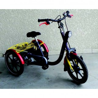 tricycle enfant mini